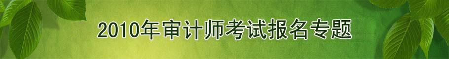 2010年审计师考试报名